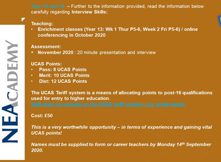 NEA Academy Info