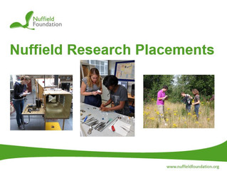 Year 13 Nuffield Research Placements