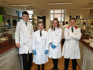 Year 9 pupils can take part in the Salter's Festival of Science at Queen's University