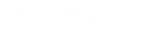 Pupil-Benchmark-logo-WIX.png