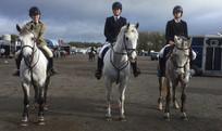 Horse-Riding Club(1).jpg