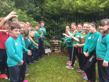 Annual Primary Environmental Science Workshop in Saint Pius X College