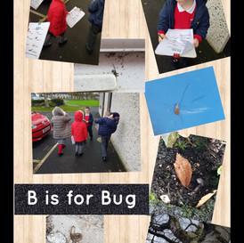 Going on bug hunts, scavenger hunts and