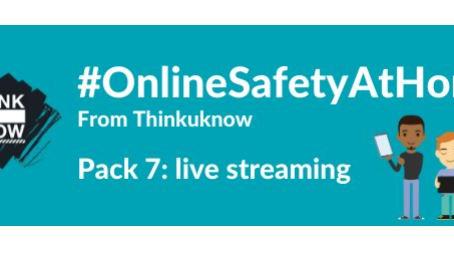 Keeping Children Safe On-line at Home 7