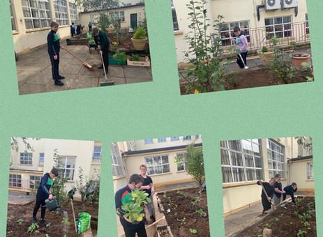 Nurture Through Nature Programme