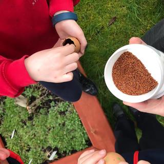 outdoor learning (1)[1].JPG