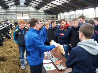 Year 11 and 12 GCSE Agriculture Trip to Greenmount College