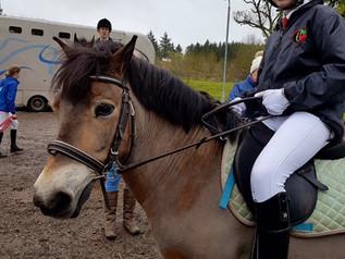Equestrian Team News