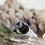 Thumbnail: Hematite Eucalyptus  |  Focus Tonic