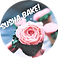 Bake_Susha_Bake_edited.png