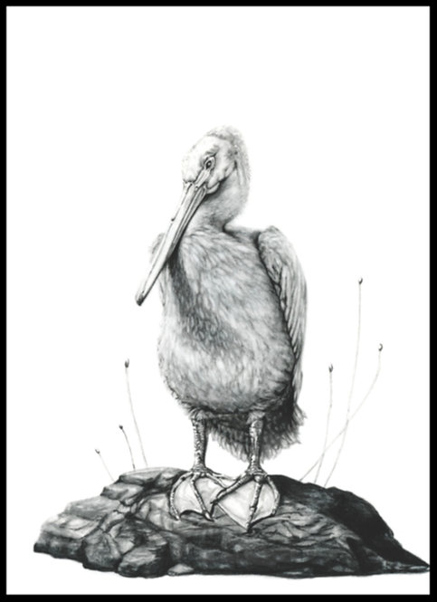 The Pelican Grip
