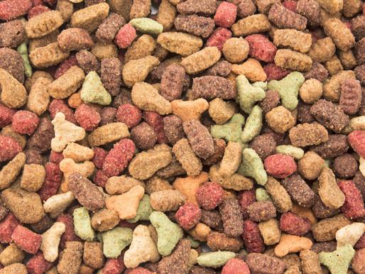 Классы кормов для кошек: чем стоит кормить свою кошку породы уральский рекс?