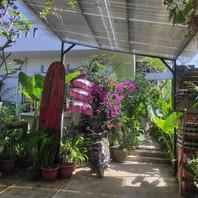 Private Residence - Sanur, Bali