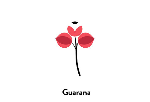 Botanical_Icons_For_web-04.jpg