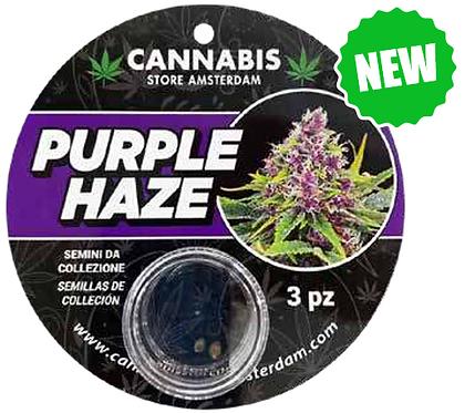 Semi da collezione Purple Haze