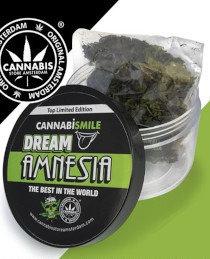 Cannabismile Dream Amnesia