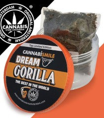 Cannabismile Dream Gorilla