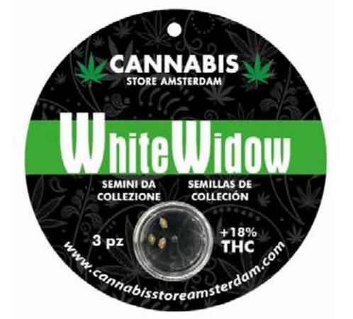 Semi da collezione White widow