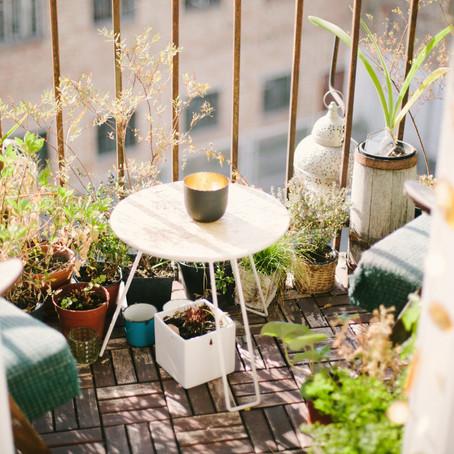 Kräuter richtig pflanzen: So gelingt der Kräutergarten am Balkon