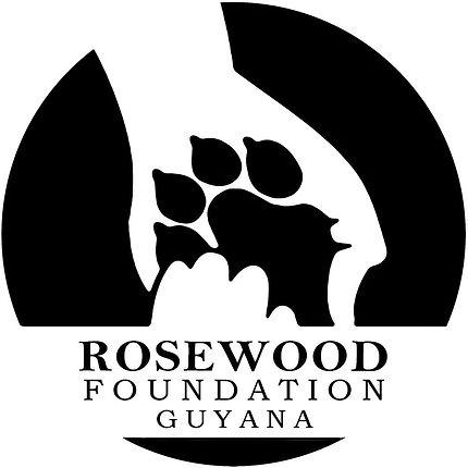 rosewood fondation wave travelart.jpg