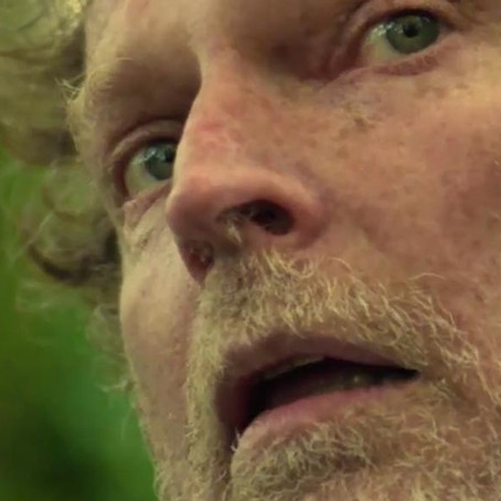 Fuck the forest - Lewis Cuthbert-Ashton | Fiction