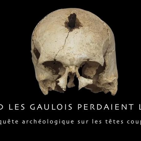 Quand les Gaulois perdaient la tête | Muséographie