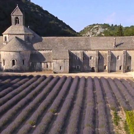 Saint-Pierre-de-l'Almanarre | Muséographie
