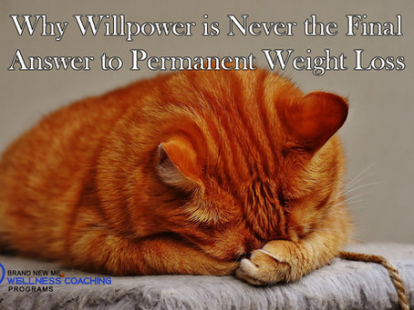 Why Willpower is Never the Final Answer to Permanent Weight Loss