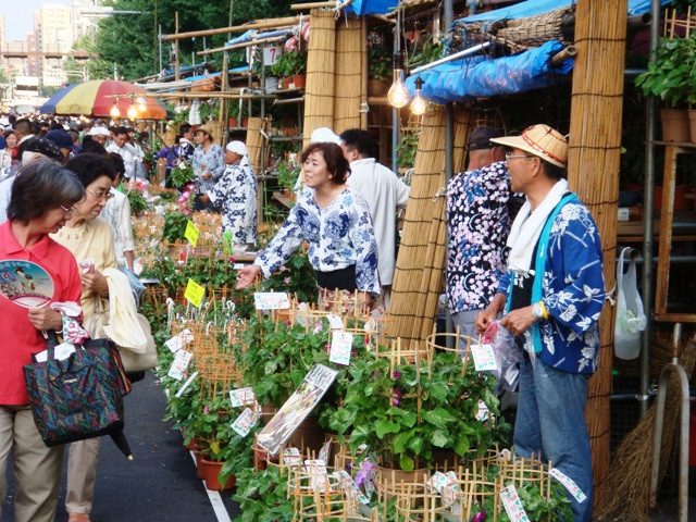 Shoppers at the Asagao festival in Tokyo