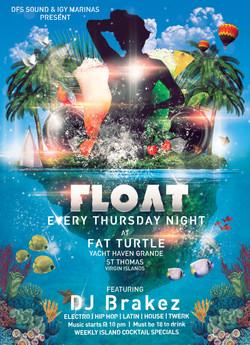 Fat Turtle - St Thomas, USVI