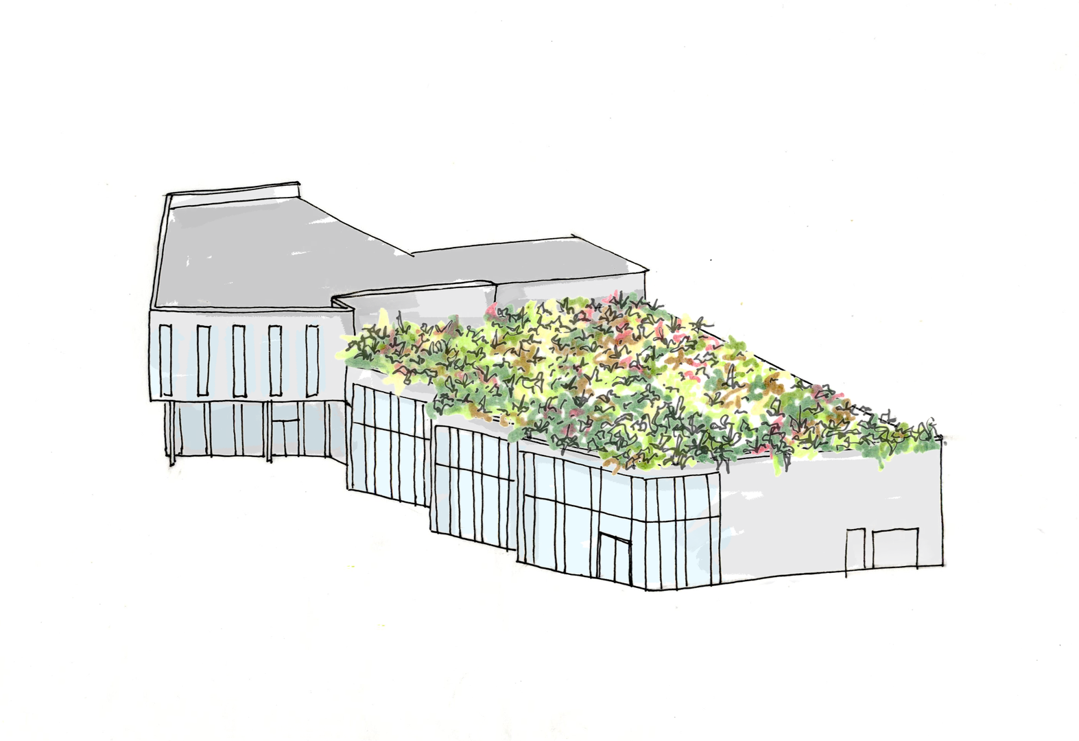 Green Roof Concept Sketch