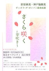 さくら咲く11.16表.jpg