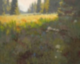 Alpine Garden 1920.jpg