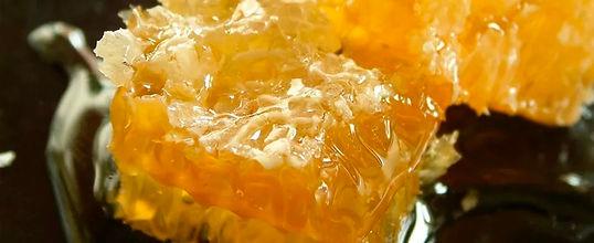 South Downs Honey.jpg