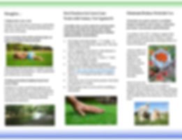 brochure lawns_draft5 w rce (1)-page-002