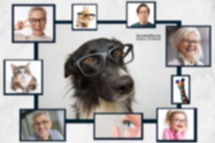 20-05-19-lentes-perros-portada-web.jpg