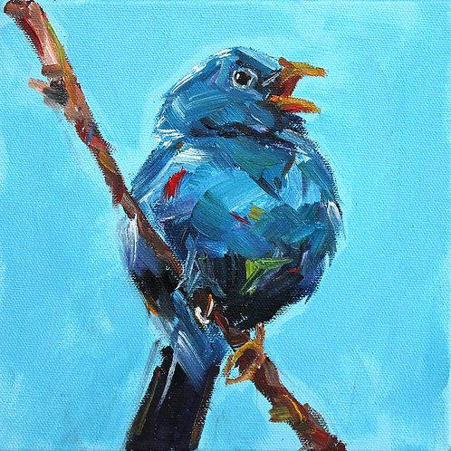 8x8 Blue Finch on Branch