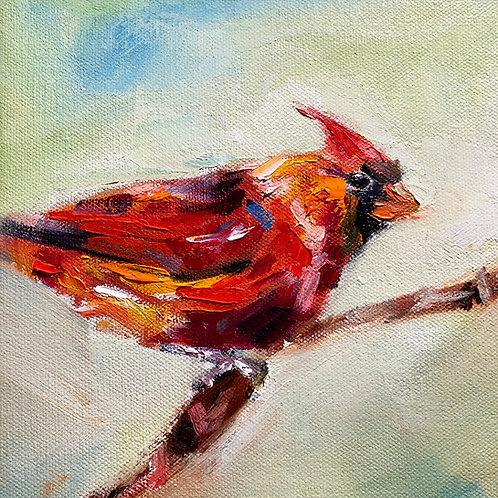 Cardinal on Branch. 8x8