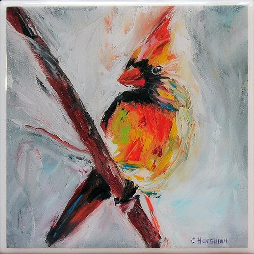 Cardinal on Branch Coaster