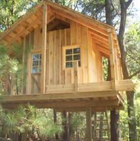 Tree house 002.jpg
