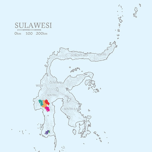 Sulawesi (12 oz Whole bean)