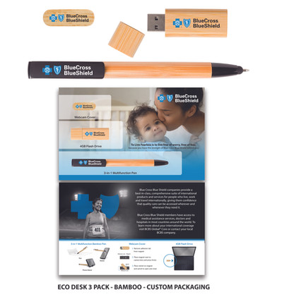 BlueCrossBlueShield EcoDesk 3P 5x8 custom packaging.jpg