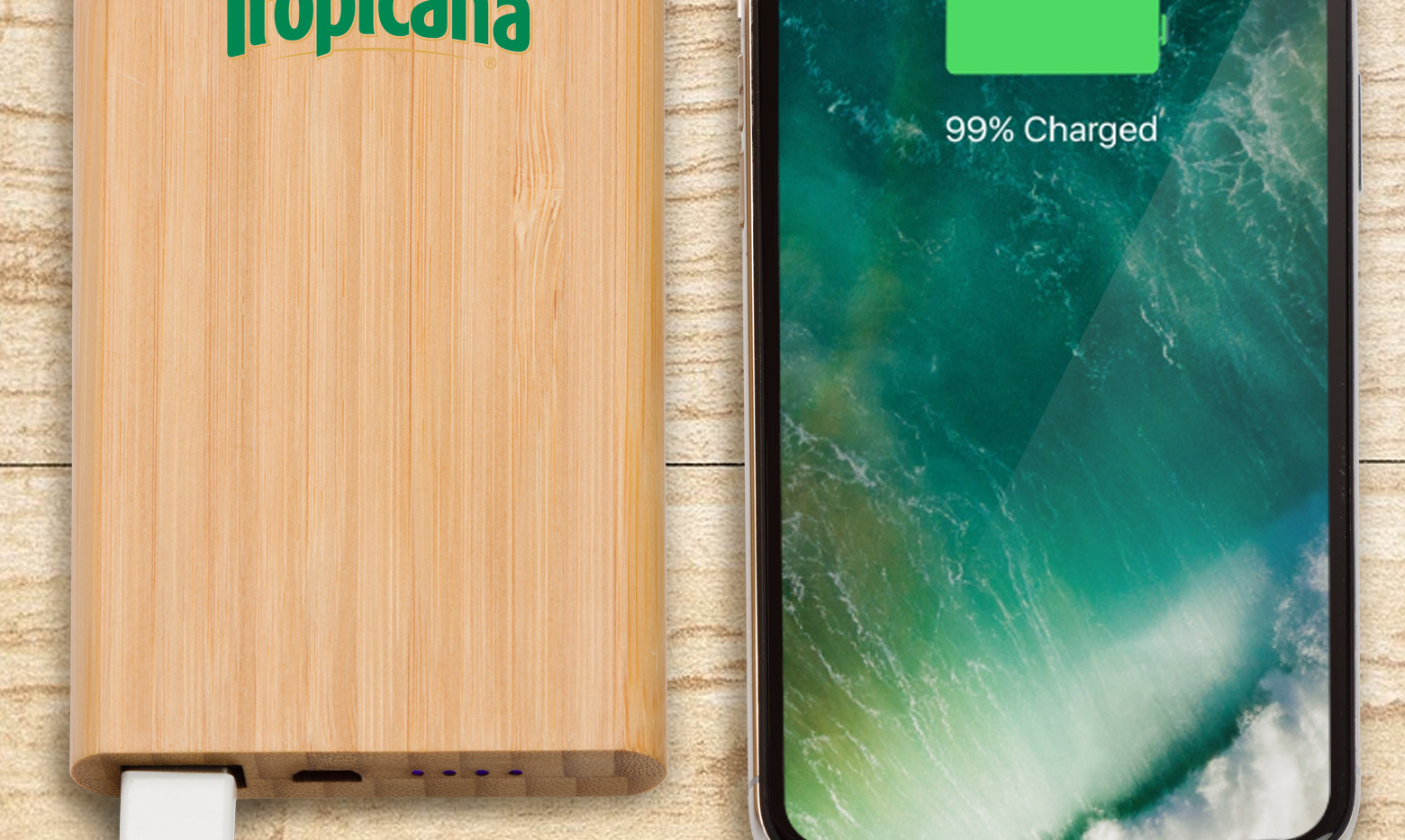 Bamboo Power Bank Hero Shot 2.jpg