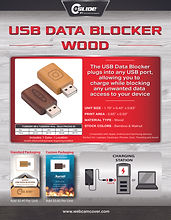 datablocker wood 8.5x11 flyer 2.jpg