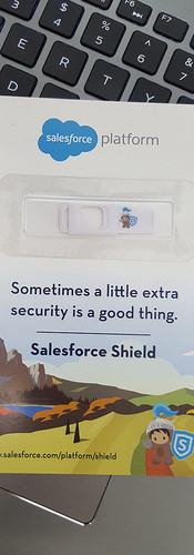salesforce platform.jpg