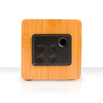 Back of large speaker.jpg