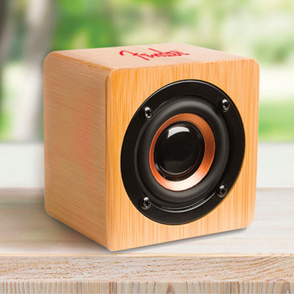 Large Speaker Fender logo.jpg