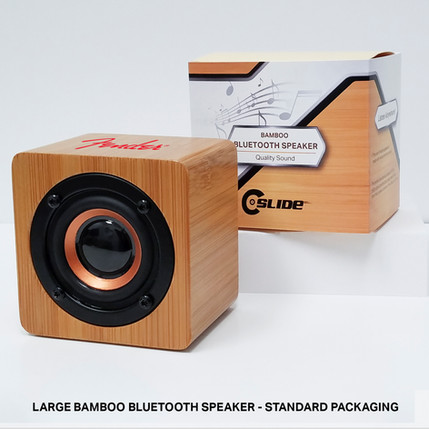 Fender Large Speaker standard packaging