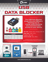 datablocker 8.5x11 2021 flyer.jpg