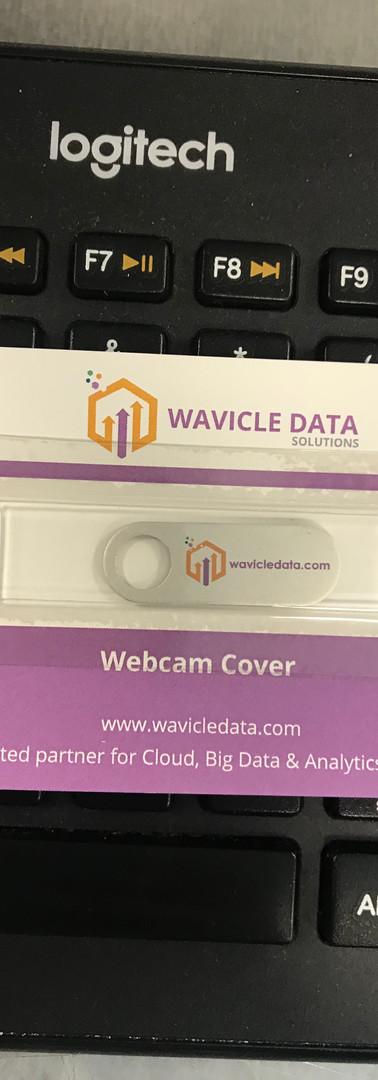 wavicle data.jpg